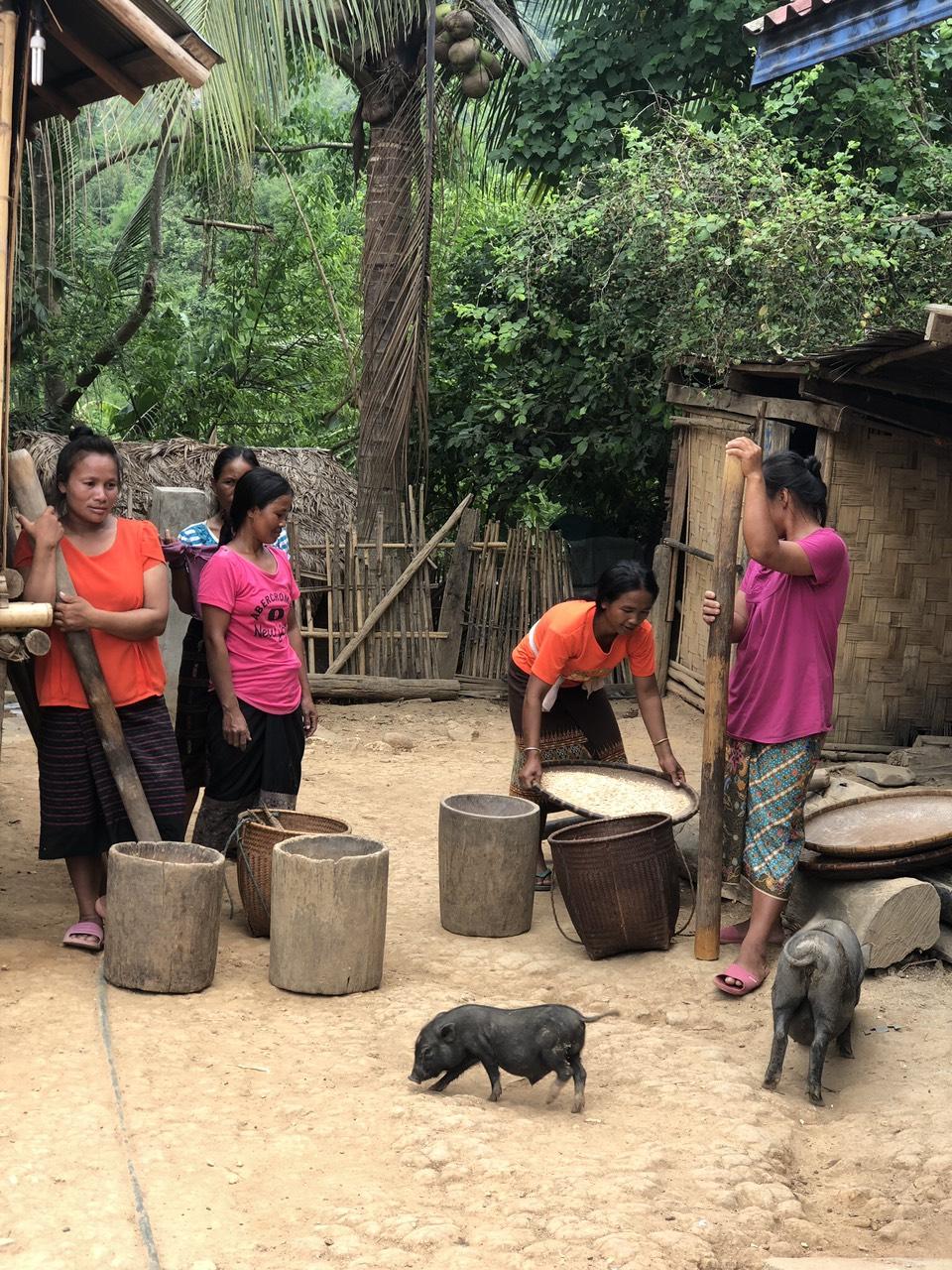 Mystère du Laos en 8 jours