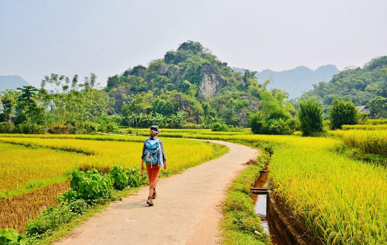 Rizières à Mai Chau, Pu Luong en 8 jours