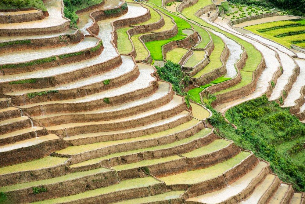 rizieres-en-terrasse-181